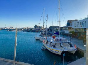 Limassol Marina Restaurants Angle View
